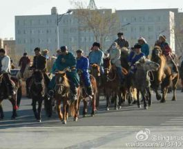 Riding horses and camels, herder took to the streets in Southern Mongolia